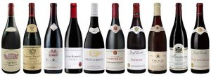 value-red-burgundy-bottles-10005231-1431483305